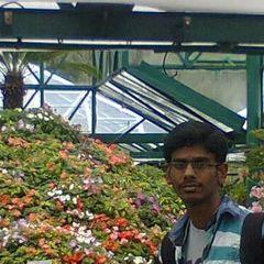 Sresh K.