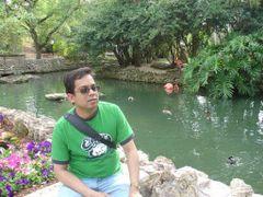Bishwajit S.
