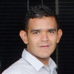 Luis Pallares L.