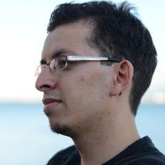 Mohamed K. El M.