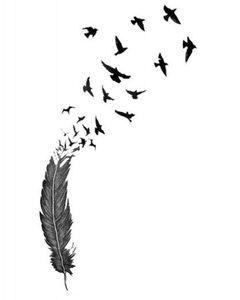 birdsoffeather