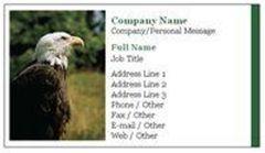 Eagle A.