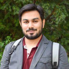 Muntazir Abbas M.