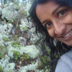 Sunitha M.