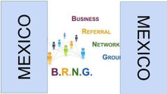 Mexico Business Referral N.