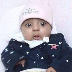 Rai Mohsin Sheraz B.