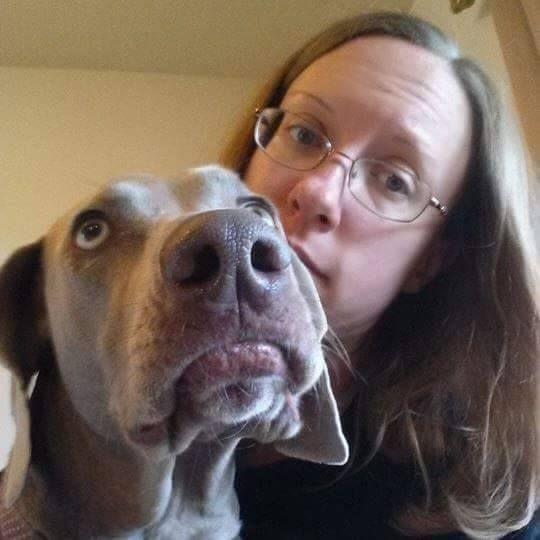 Salisbury Md Dog Rescue