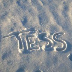Tess B.