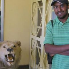 Addisu T.