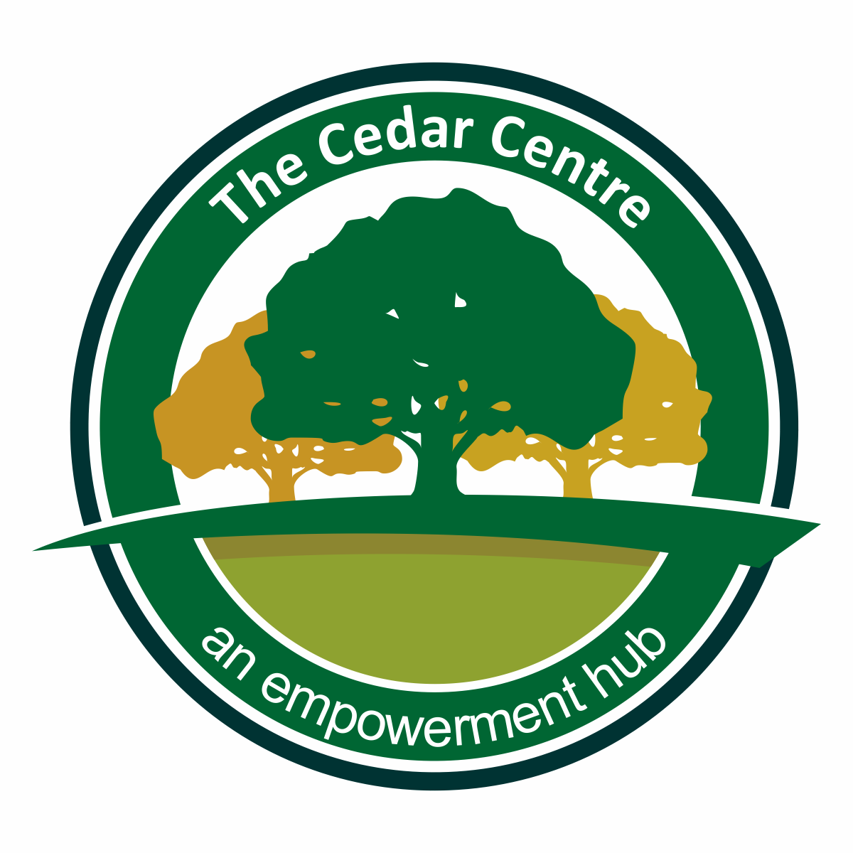 Cedar stem entrepreneurship h ibm bluemix training Cedar credit
