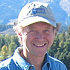 Tim Z.