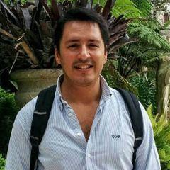 Flavio CF O.