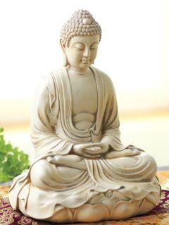 Shruti Yoga N.