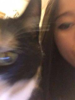 Cat M.