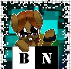 BN K.
