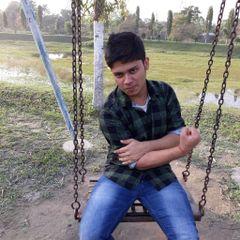 Sankhadeep M.