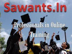 Sawants I.