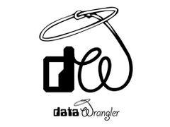 Data-Wrangler