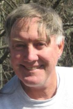 Steve N.