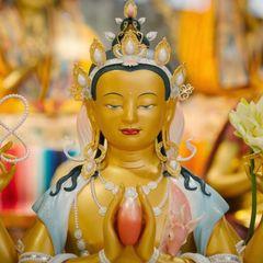 Kadampa Meditation Center D.