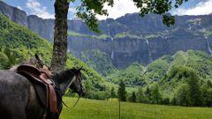 Horse Trek A.