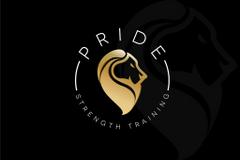 PRIDE Strength T.