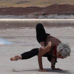yogayantra