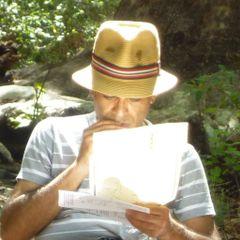 Reza D.