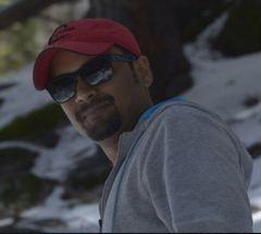 Parthasarathi D.