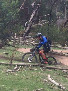 Six Best Mountain Bike Trails in Tasmania - Discover Tasmania