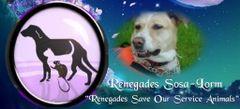 RENEGADES S.