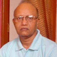 Ram Kripal U.