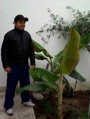 Manuel Sornoza O.