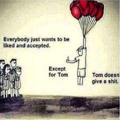 Tom V.