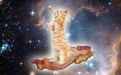 Pleiadian Starseeds groups | Meetup