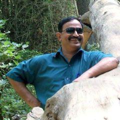 Shashidharan M.