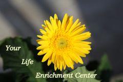 Your Life Enrichment C.