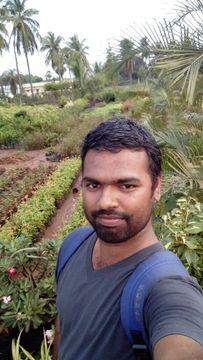 Selvam S.