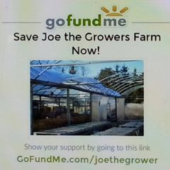 Joe The G.