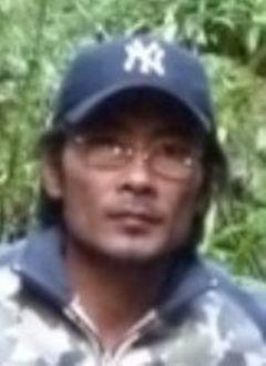 Tiger S.