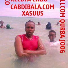 Abdibalad M.