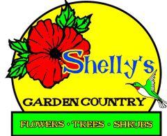 Shelly's Garden C.