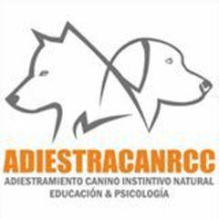 Adiestracanrcc