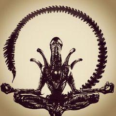 Dharma D.