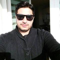 Shazib S.