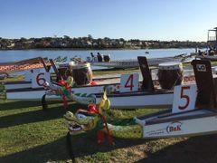DSA Dragon Boating Racing C.