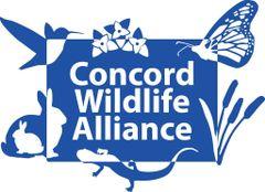 Concord Wildlife A.