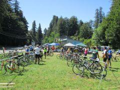 Perfomance Bike Mountain V.