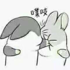 Qiheng C.