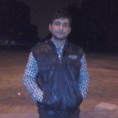 Akhilesh P.